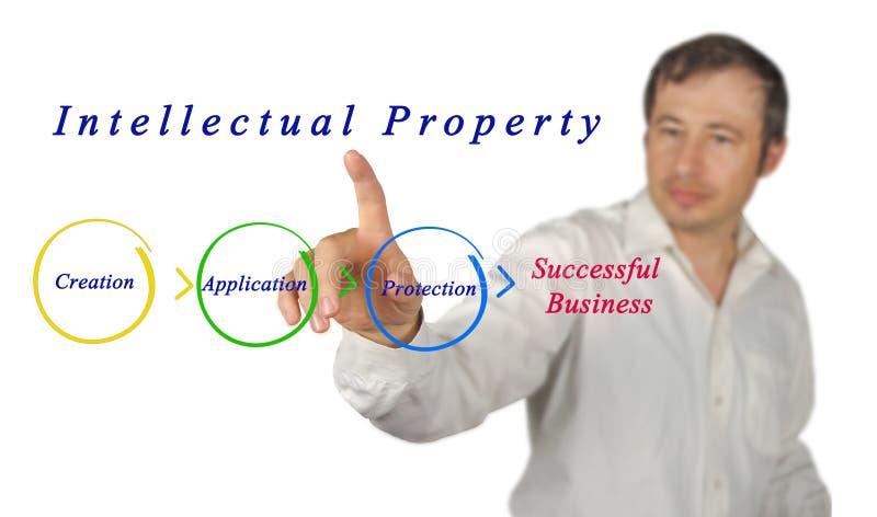 Диаграмма интеллектуальной собственности стоковые фотографии rf
