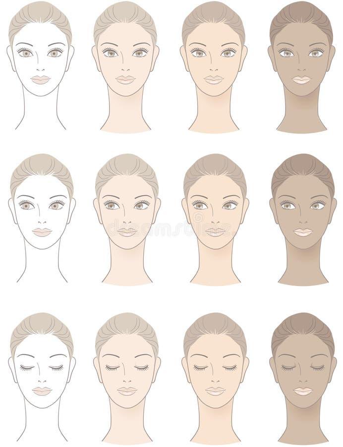 Диаграмма красивейшего цвета лица женщины бесплатная иллюстрация