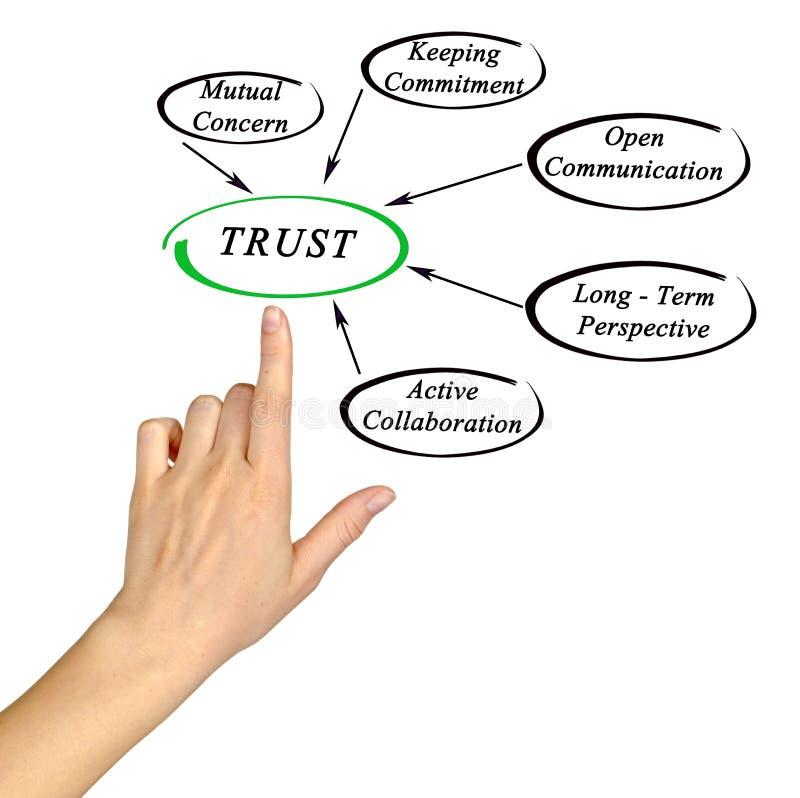 Диаграмма доверия стоковое фото