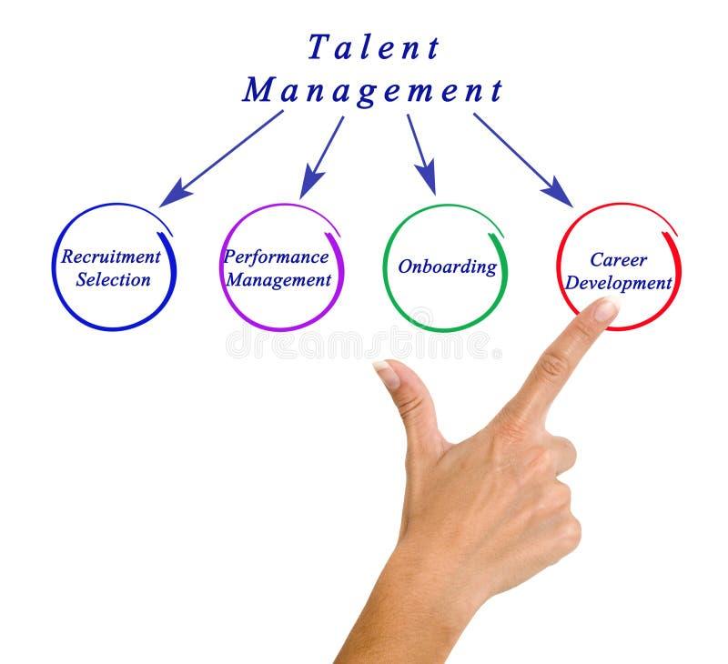 Диаграмма управления таланта стоковое изображение rf