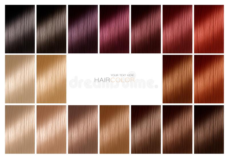 Диаграмма цвета для краски волос подкраски Цветовая палитра волос с рядом стоковая фотография rf