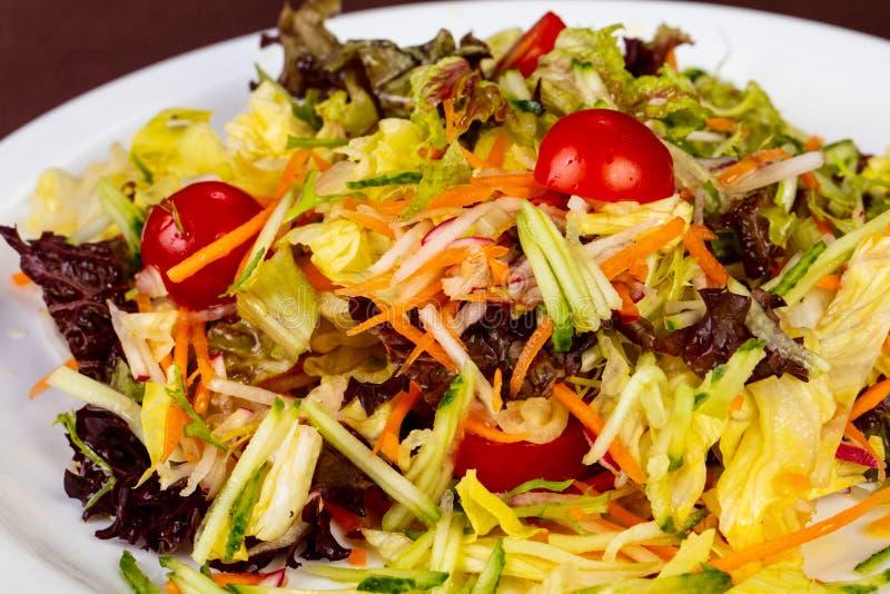 Диетический салат vegan стоковое фото