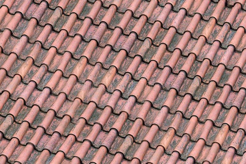 Дизайна основания предпосылки плитки крыши линии старого windblown коричневого красного волнистого городские раскосные стоковые фото