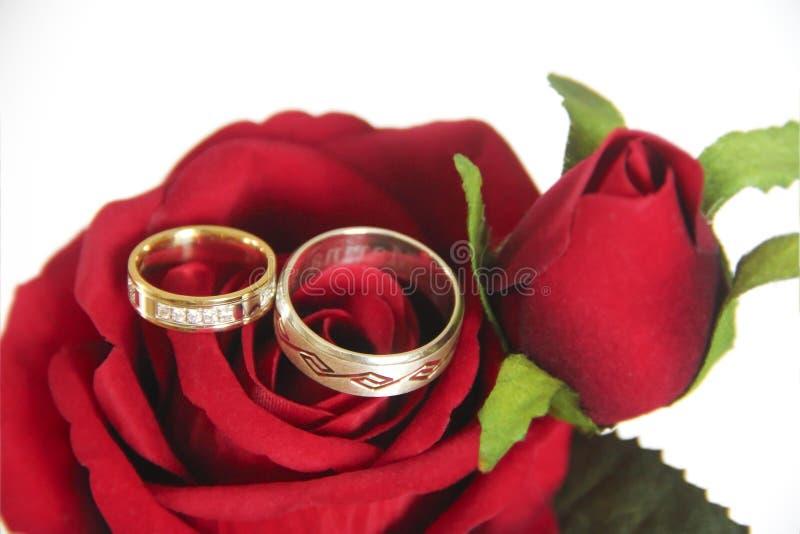 Дизайнерские кольца золота для жениха и невеста на их день свадьбы стоковая фотография rf