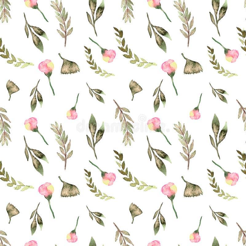 Дизайн безшовной акварели картины флористический: сад поднял пион, пинк порошка белый, зеленый цвет ветви иллюстрация вектора