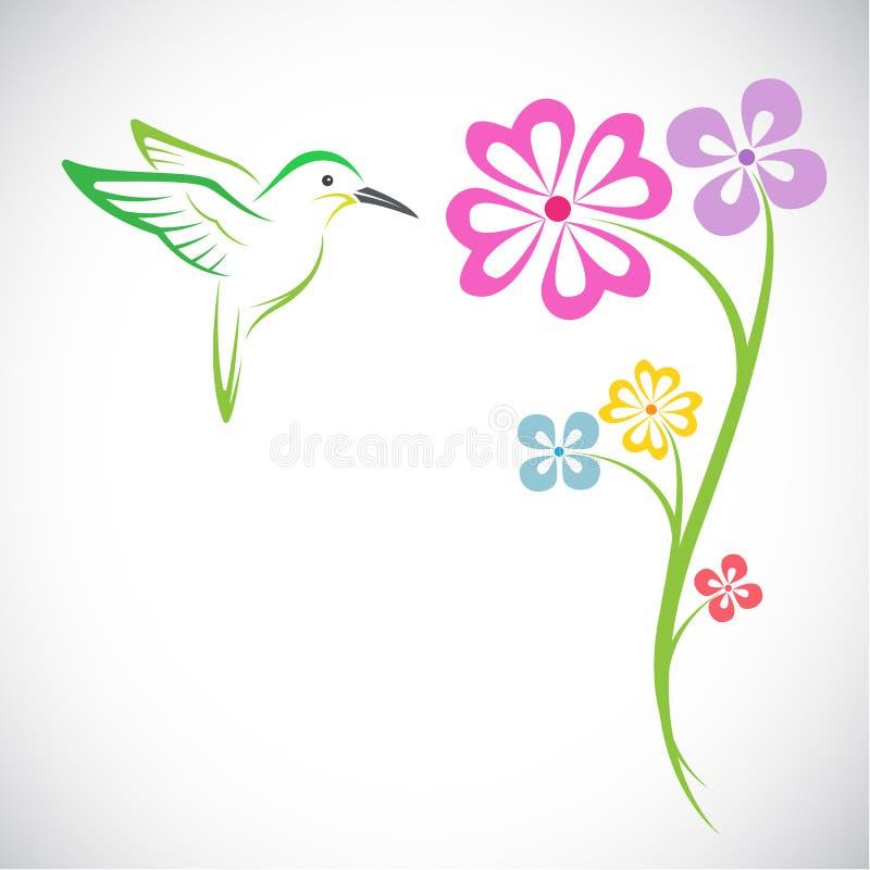 Дизайн вектора колибри и цветков иллюстрация штока