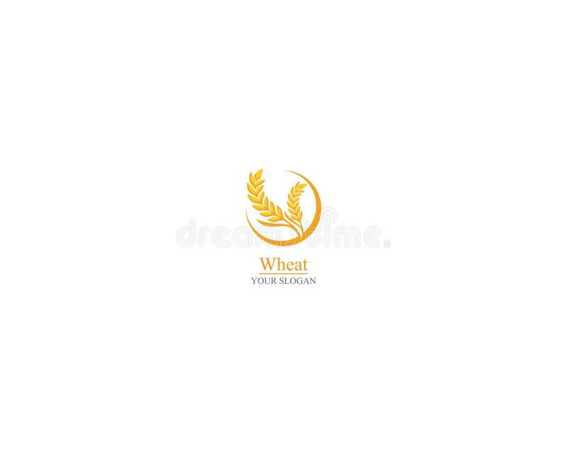 Дизайн значка вектора шаблона логотипа пшеницы земледелия бесплатная иллюстрация