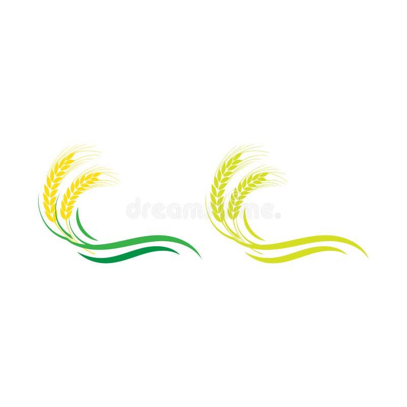 Дизайн значка вектора шаблона логотипа пшеницы земледелия, органический вектор значка логотипа пшеницы, стильный логотип для рынк бесплатная иллюстрация