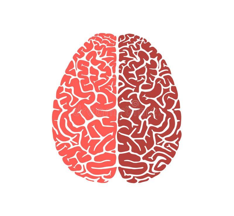 Дизайн значка образования формы человеческого мозга плоский бесплатная иллюстрация