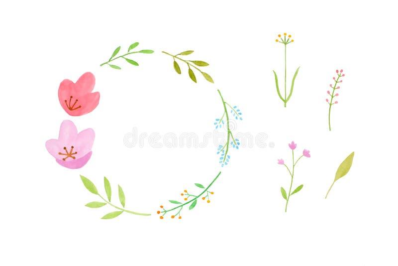 Дизайн искусства иллюстрации акварели, установил красочного венка цветков в стиле руки акварели pianting изолированного на белой  иллюстрация штока
