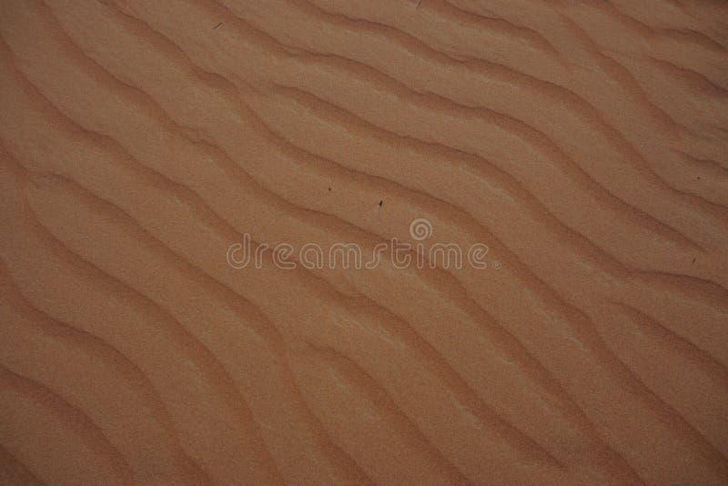 Дизайн ландшафта пустыни Дубай стоковые изображения rf
