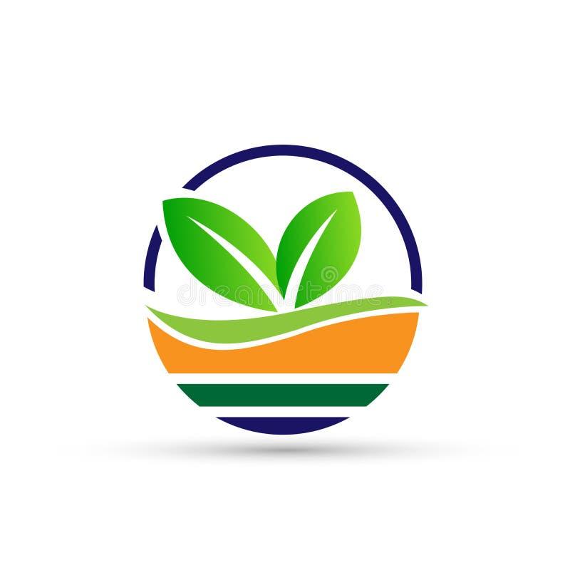 Дизайн логотипа символа значков ботаники дерева лист воды завода глобуса на белой предпосылке иллюстрация штока