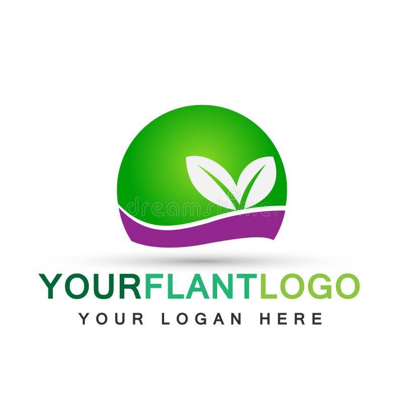 Дизайн логотипа символа значков ботаники дерева лист воды завода глобуса на белой предпосылке иллюстрация вектора