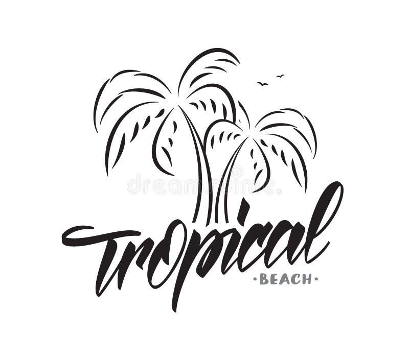Дизайн оформления литерности вектора тропического пляжа с пальмами на белой предпосылке каникула территории лета katya krasnodar иллюстрация штока