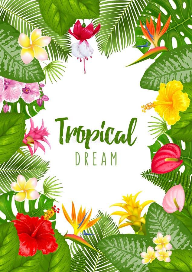 Дизайн рамки лета тропический иллюстрация штока