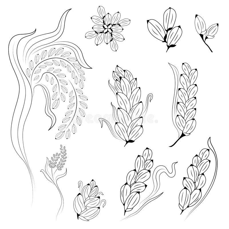 Дизайн риса на белой предпосылке стоковые изображения rf
