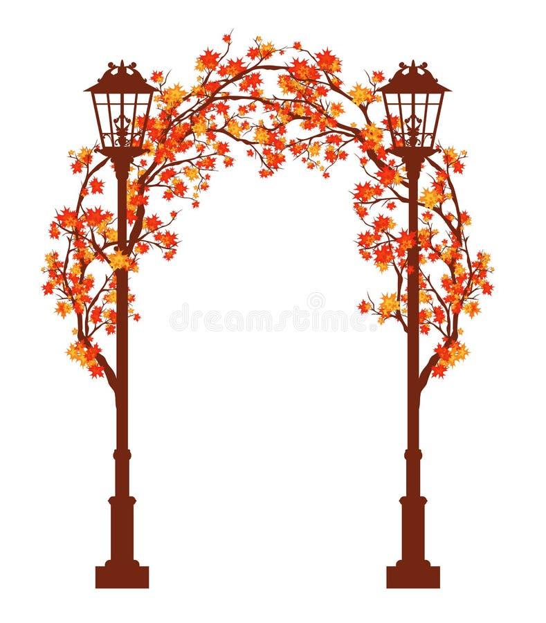 Дизайн свода вектора ветвей уличных светов и дерева сезона осени бесплатная иллюстрация