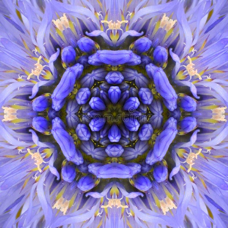Дизайн фиолетовой концентрической мандалы центра цветка Kaleidoscopic стоковая фотография