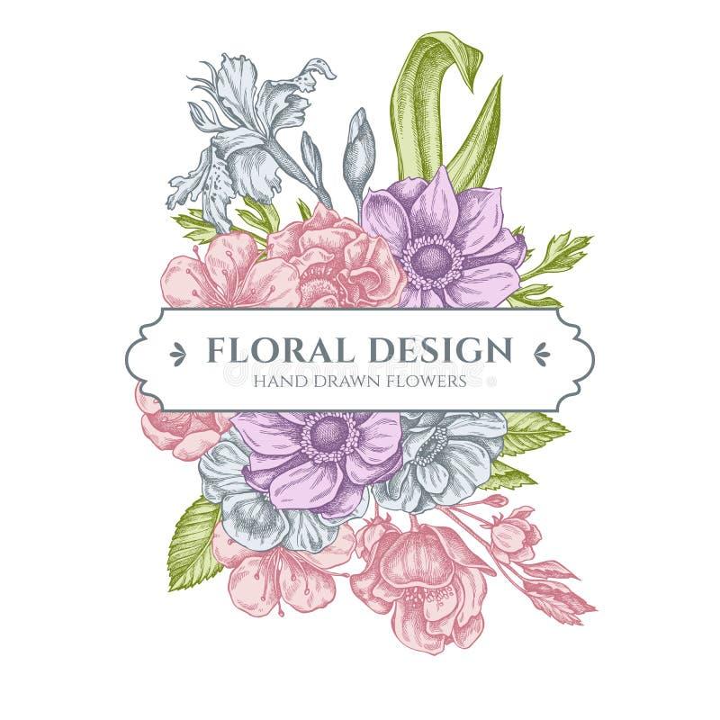 Дизайн флористического букета с пастельной ветреницей, japonica радужки, Сакурой бесплатная иллюстрация