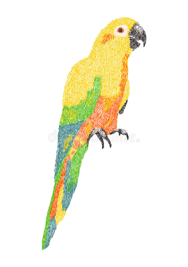Дизайн художественного произведения вышивки попугая conure Солнця для одежды бесплатная иллюстрация
