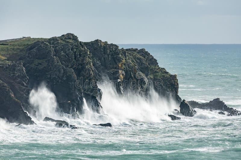 Дикая береговая линия, бухта Kynance, Корнуолл стоковое фото