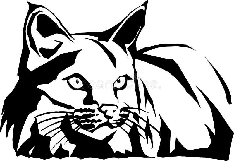 дикая кошка иллюстрации бесплатная иллюстрация