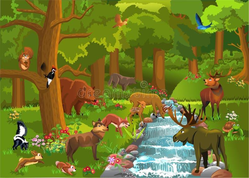 Дикие животные в лесе иллюстрация штока