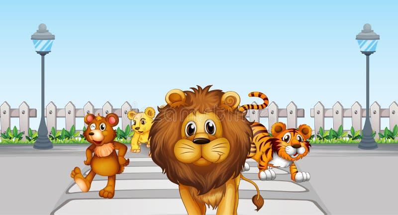 Дикие животные в дороге иллюстрация штока