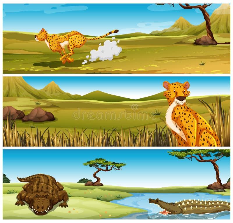 Дикие животные в поле иллюстрация штока