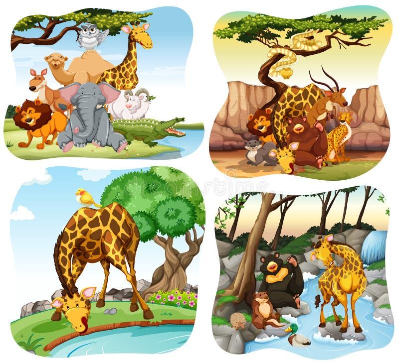 Дикие животные живя в лесе бесплатная иллюстрация