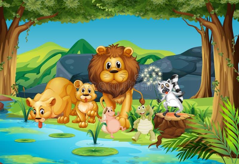 Дикие животные живя рекой иллюстрация вектора