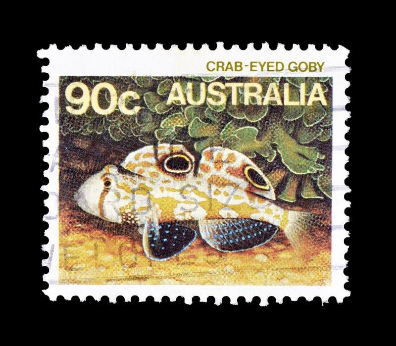 Дикие животные на печатях почтового сбора стоковое фото rf
