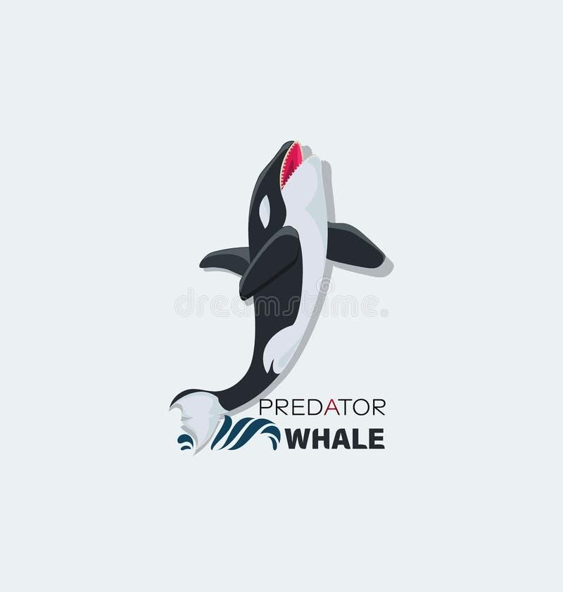 Дикий атакуя кит Хищник со страшными челюстями иллюстрация штока