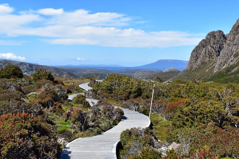Дикий пеший туризм в парке горы вашгерда, Австралии стоковая фотография
