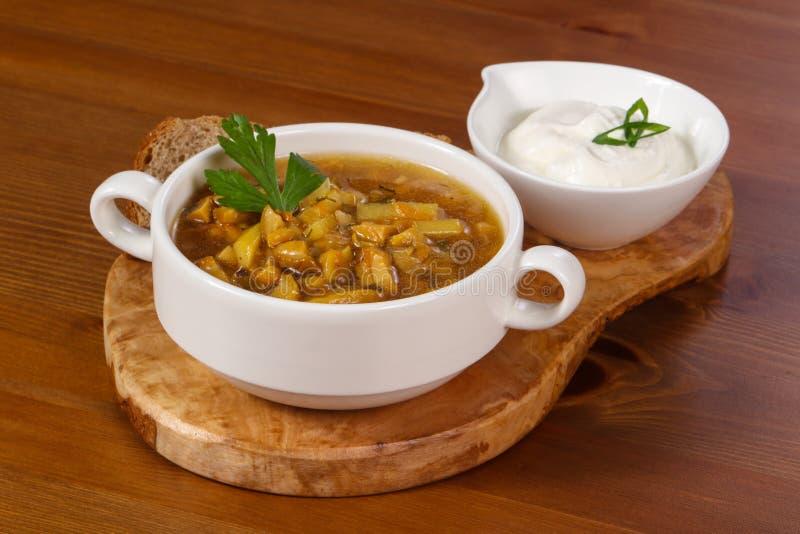 Дикий суп гриба со сметаной стоковое фото rf