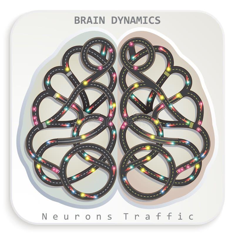 Динамика мозга иллюстрация штока