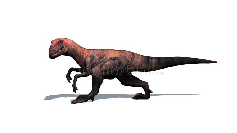 Динозавр - велоцираптор - изолированный на белой предпосылке иллюстрация вектора