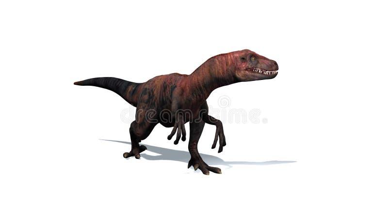 Динозавр - велоцираптор - изолированный на белой предпосылке бесплатная иллюстрация