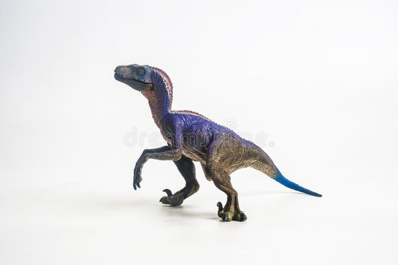 Динозавр, велоцираптор на белой предпосылке стоковые фото