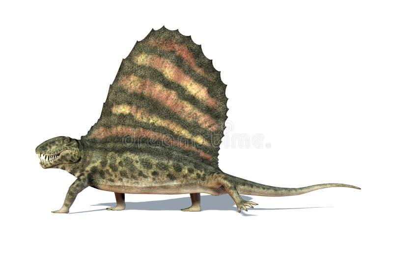 Динозавр Dimetrodon. Осмотренный от в сторону. На белой предпосылке. иллюстрация штока