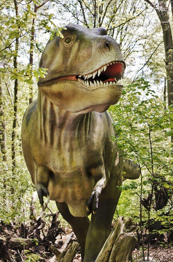 Динозавр rex тиранозавра стоковые изображения