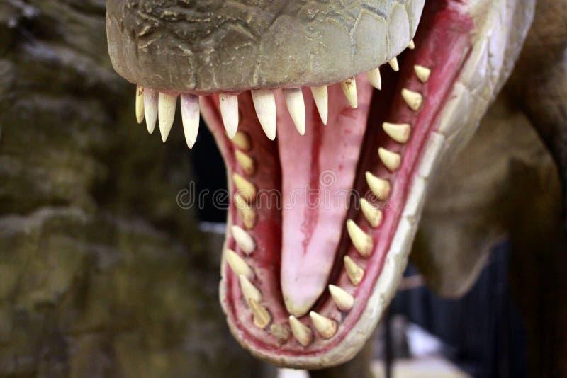 Динозавр Rex Tyrannosaurus стоковые фото