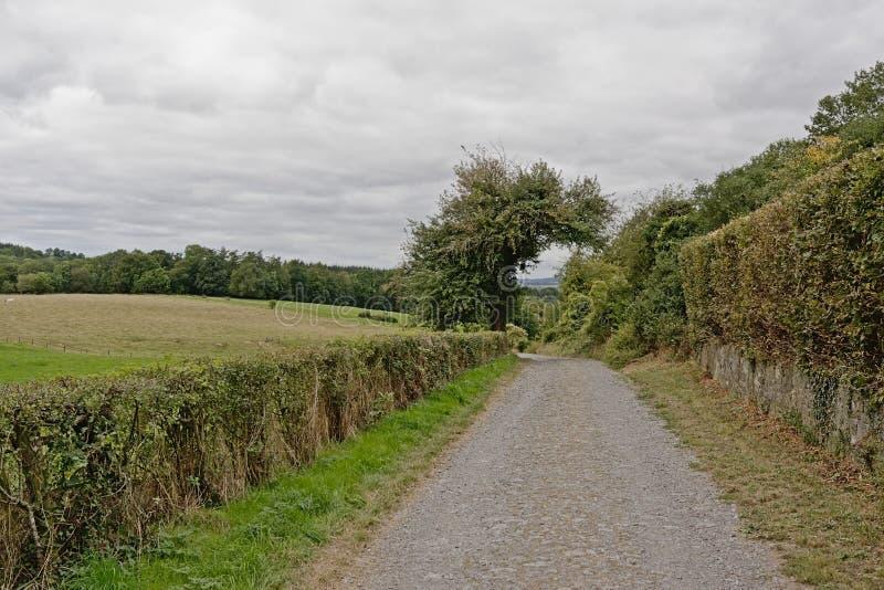 Диртроад, проходящий через холмы Кондроза, Намур, Бельгия стоковые изображения rf