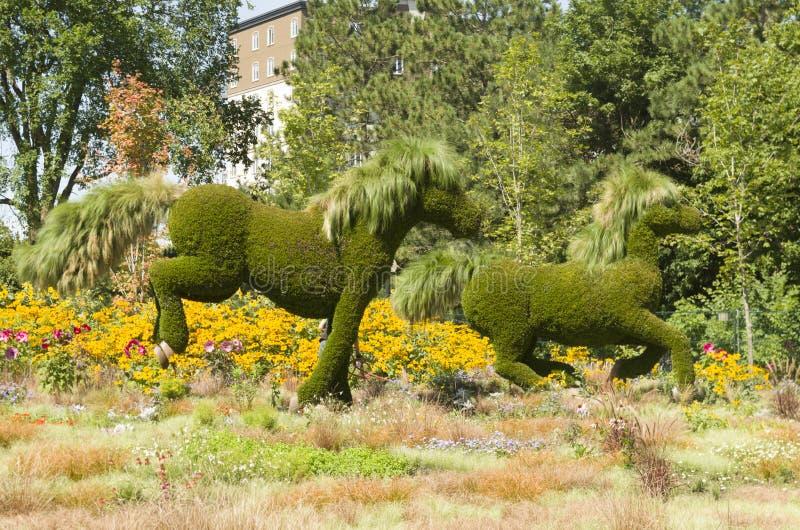 Дисплей MosaïCanada 150 лошадей стоковые фотографии rf