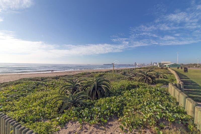 Дистантный горизонт города и ландшафт голубого облачного неба прибрежный стоковые фотографии rf