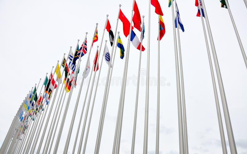 Диффрентные национальные флаги Организации Объединенных Наций стоковые изображения rf