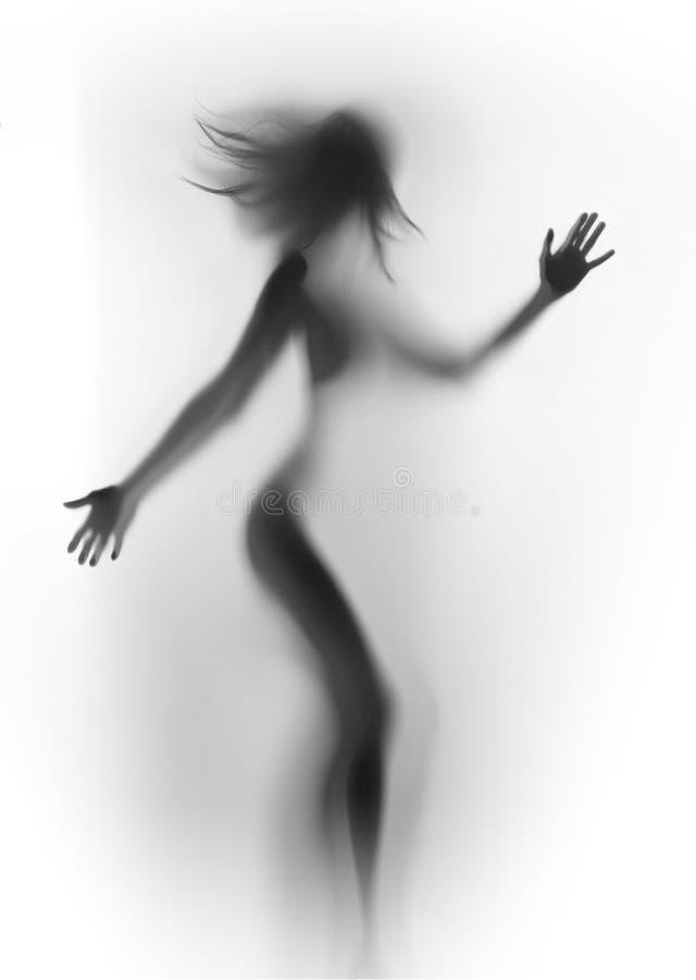 Диффузный силуэт красивой женщины, с длинными волосами и руками стоковое изображение rf