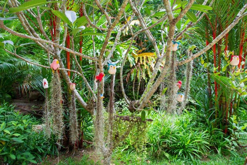 Дичь на дереве стоковое изображение rf