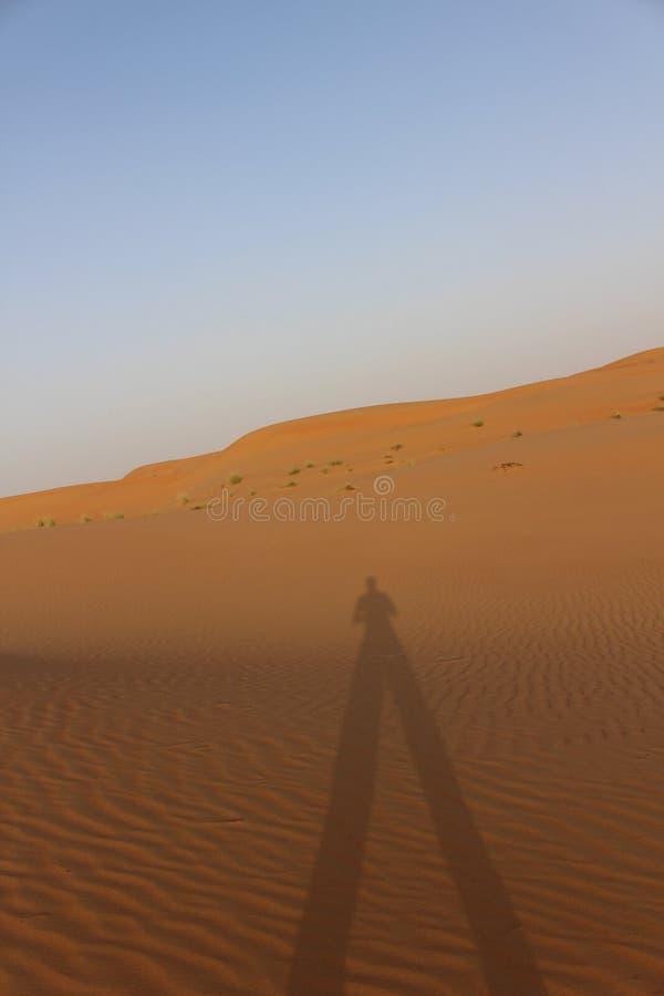 Длинная тень в песках Wahiba, Оман захода солнца стоковая фотография