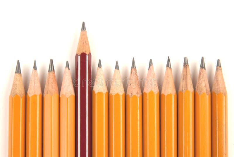 длинние карандаши замыкают накоротко стоковая фотография